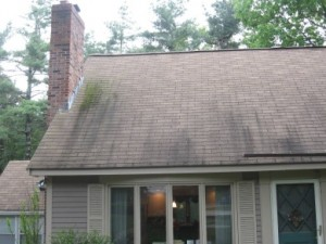 A Practical Roof Cleaning Solution for an Ugly Roof