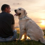 Can a Dog Really Relieve Stress?
