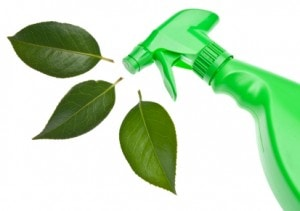Green Ways to Keep your Home Clean