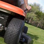 5 Tips to Revitalize your Lawn and Garden for Spring